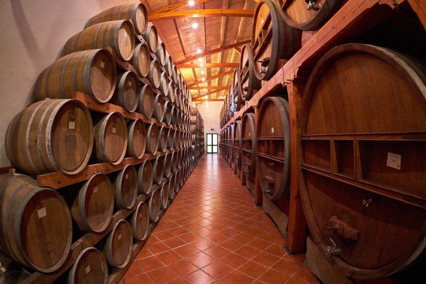 Cantine Pellegrino – Visite e degustazioni a Marsala